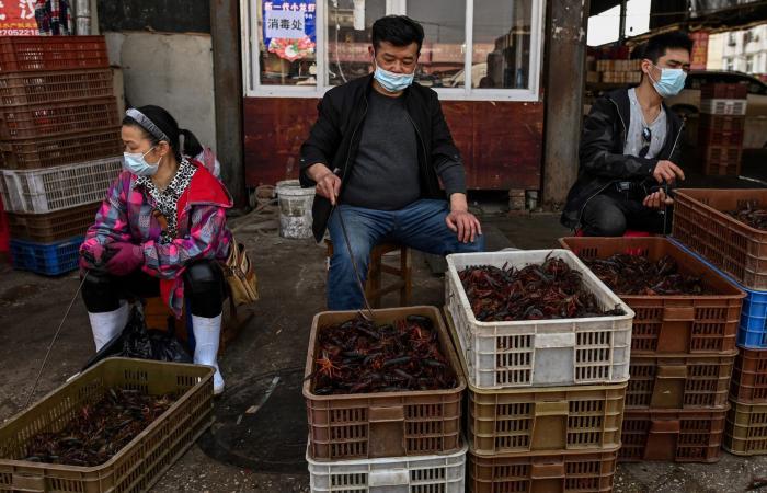 بعد تسريبات الصحة العالمية.. الصين تنفي: لم نتأخر