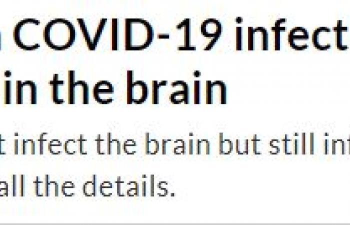 دراسة بجامعة كولومبيا: يمكن أن يتسبب فيروس كورونا فى تلف الدماغ