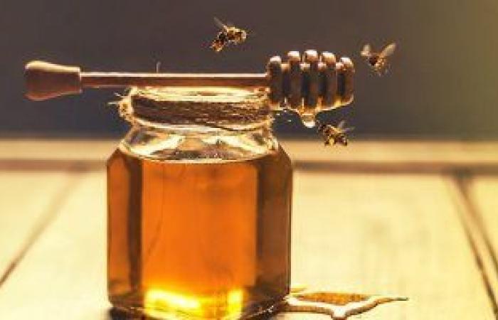 6 أغذية تحارب البكتيريا والجراثيم بشكل طبيعى.. منها الزنجبيل والعسل