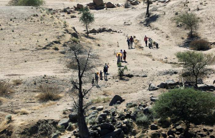 وثيقة دولية تكشف.. 350 ألفاً يعانون من الجوع في تيغراي