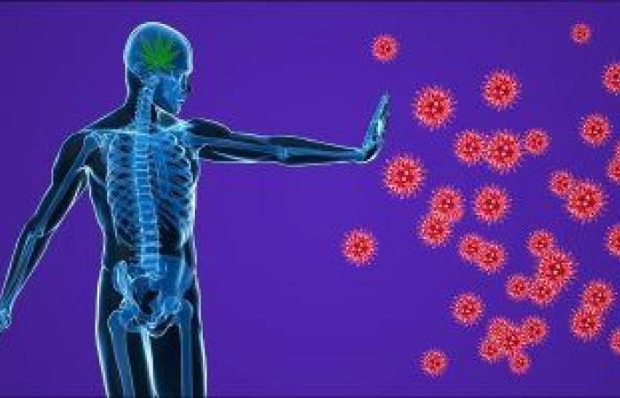 5 أعراض تصيب جلدك تشير لإصابتك بمرض مناعى.. تعرف عليها