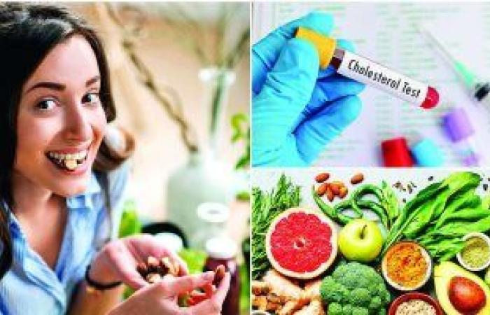 رجيم بورتفوليو أفضل نظام غذائى لخفض مستويات الكوليسترول فى الدم