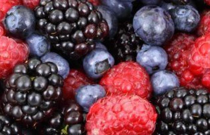 الأطعمة الغنية بالفلافونويد تقلل خطر التدهور المعرفى.. اعرف فوائدها لعقلك