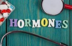 باحثون يكشفون عن هرمون فى الجسم يساعد على الشعور بالشبع ويحرق الدهون